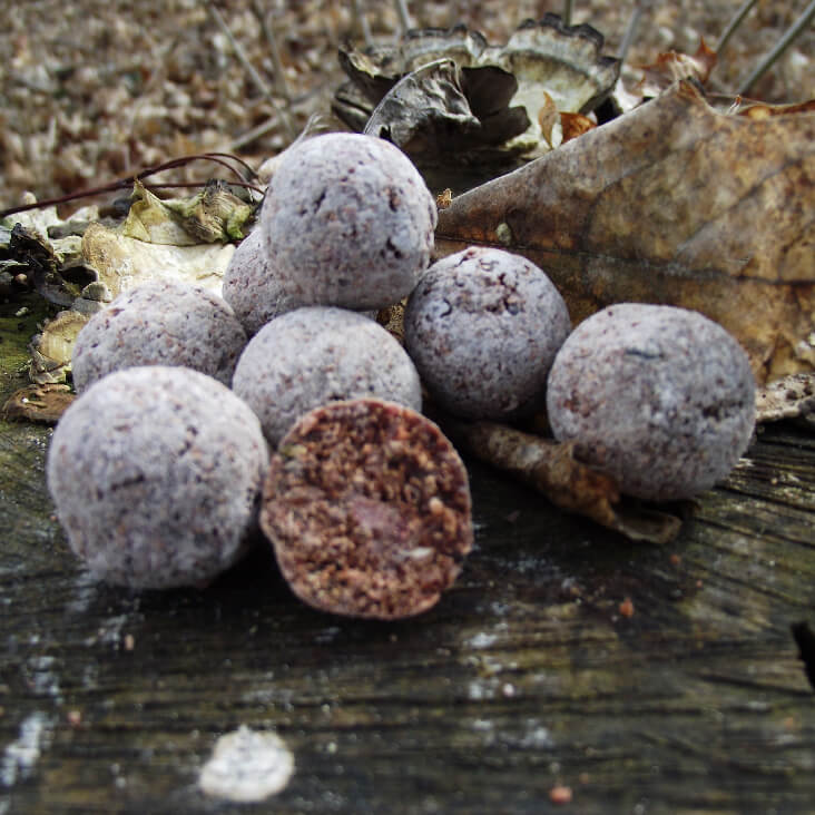 Boilies Mastodont Baits Crazy Mussels we. 300g 20mm